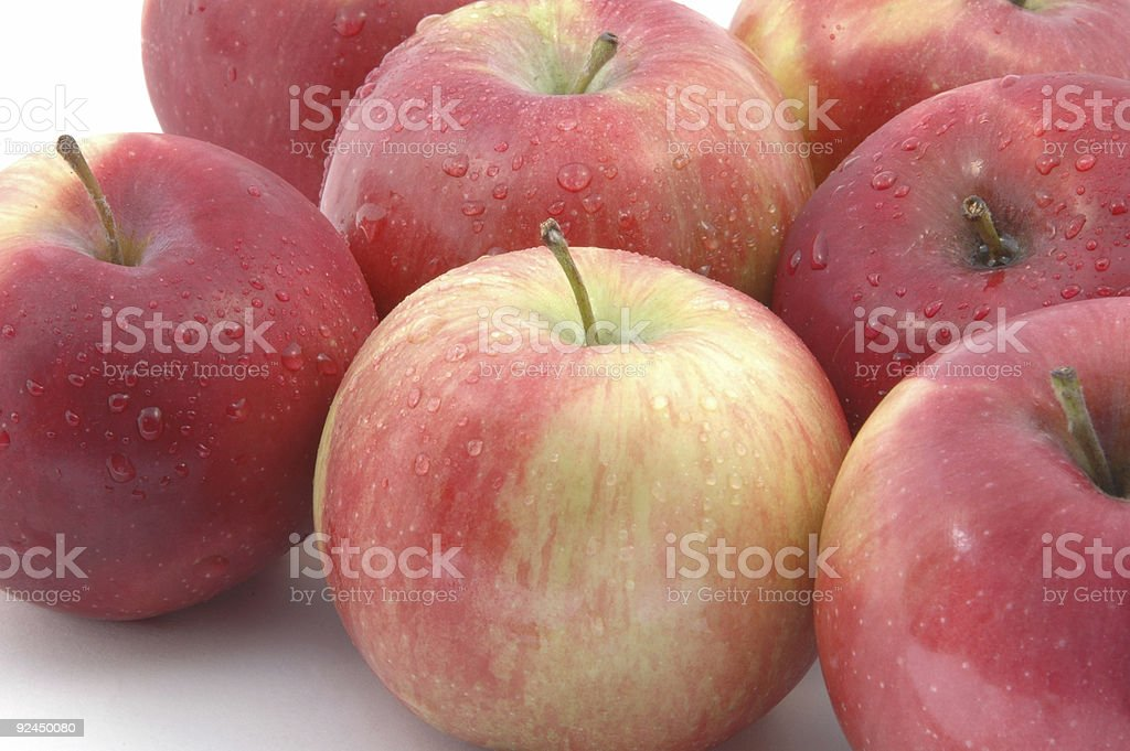 mcintosh apples horizontal stock photo