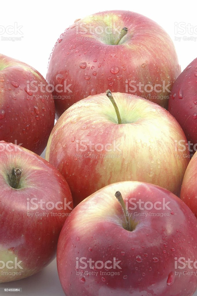 mcintosh apples vertical group stock photo