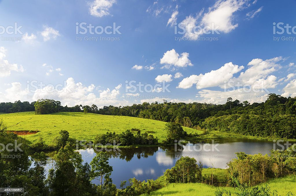 Meadow and Blue Sky stock photo