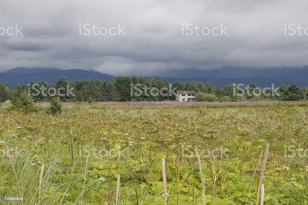 Meadow and farmhouse in Alaska stock photo
