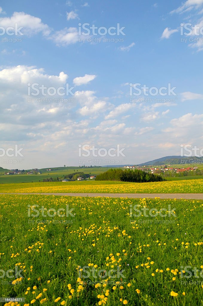 meadow and sky in austria stock photo