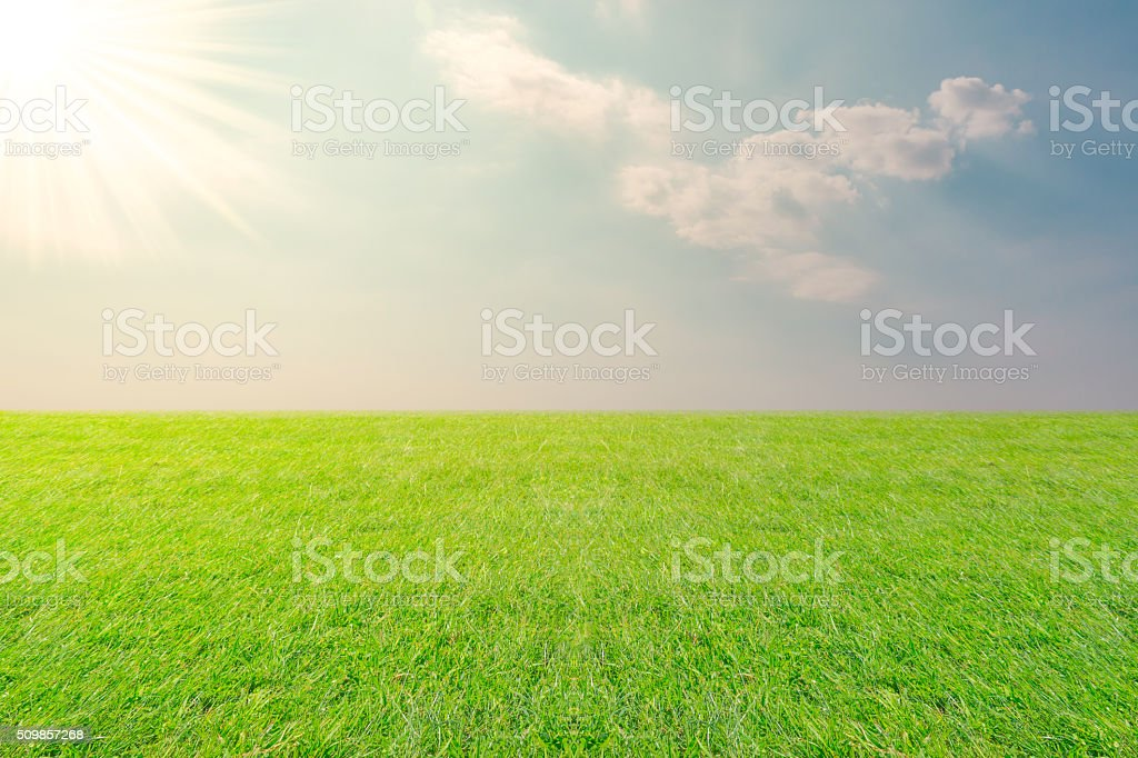 Meadow and Sky landscape. stock photo