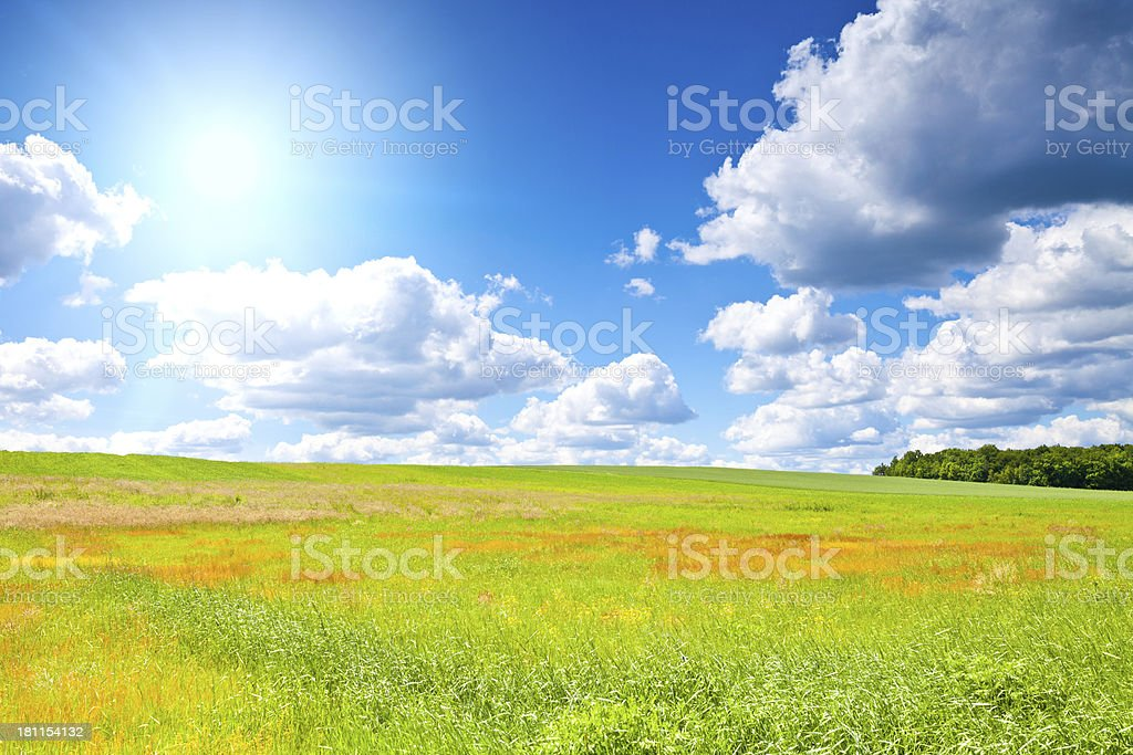 Meadow and sky royalty-free stock photo