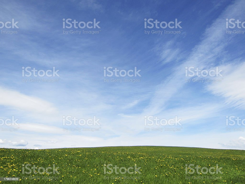 meadow and sky with interesting clouds stock photo