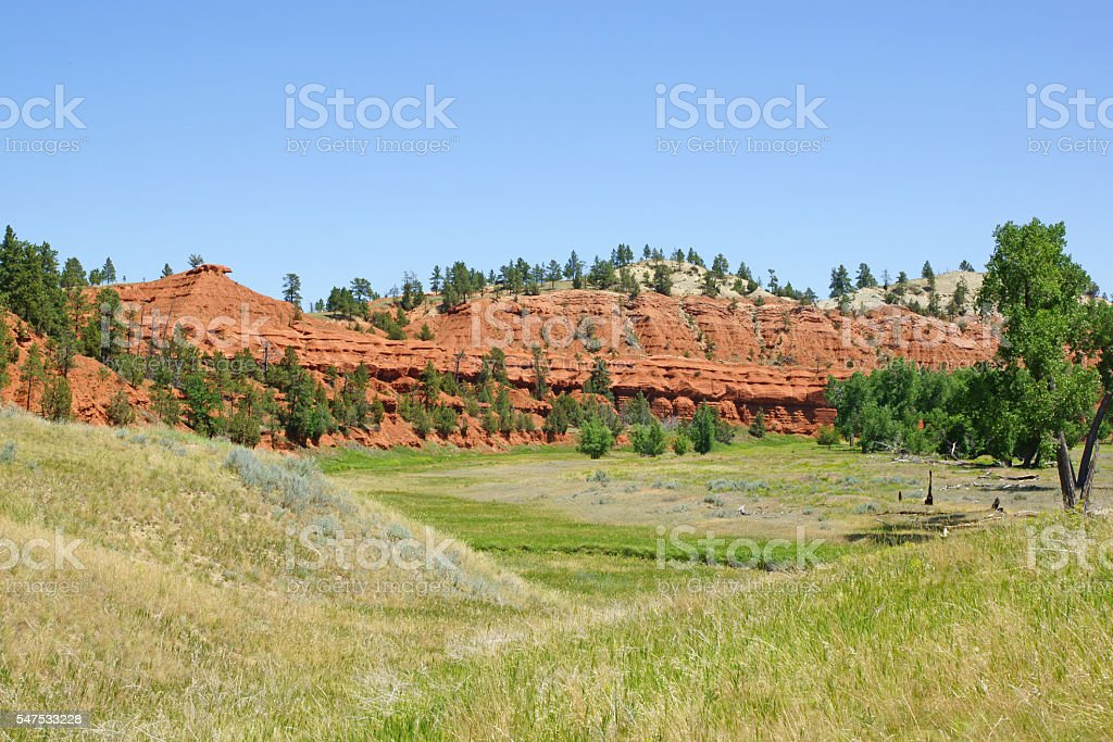 Meadow at Devils Tower National Monument stock photo