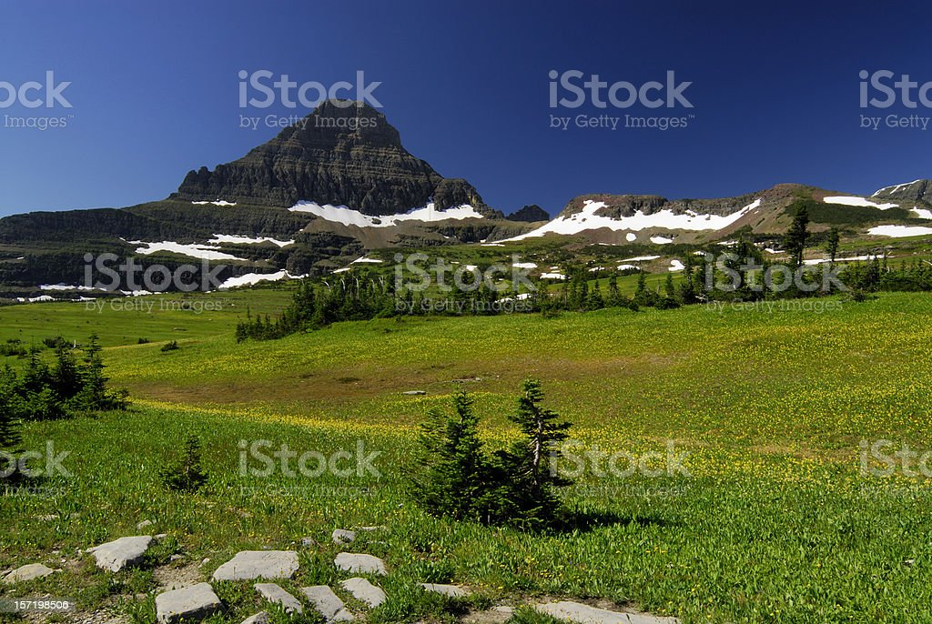 Meadow at Glacier National Park royalty-free stock photo
