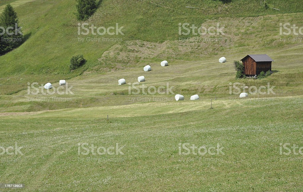 Meadow at Nauders, Austria royalty-free stock photo