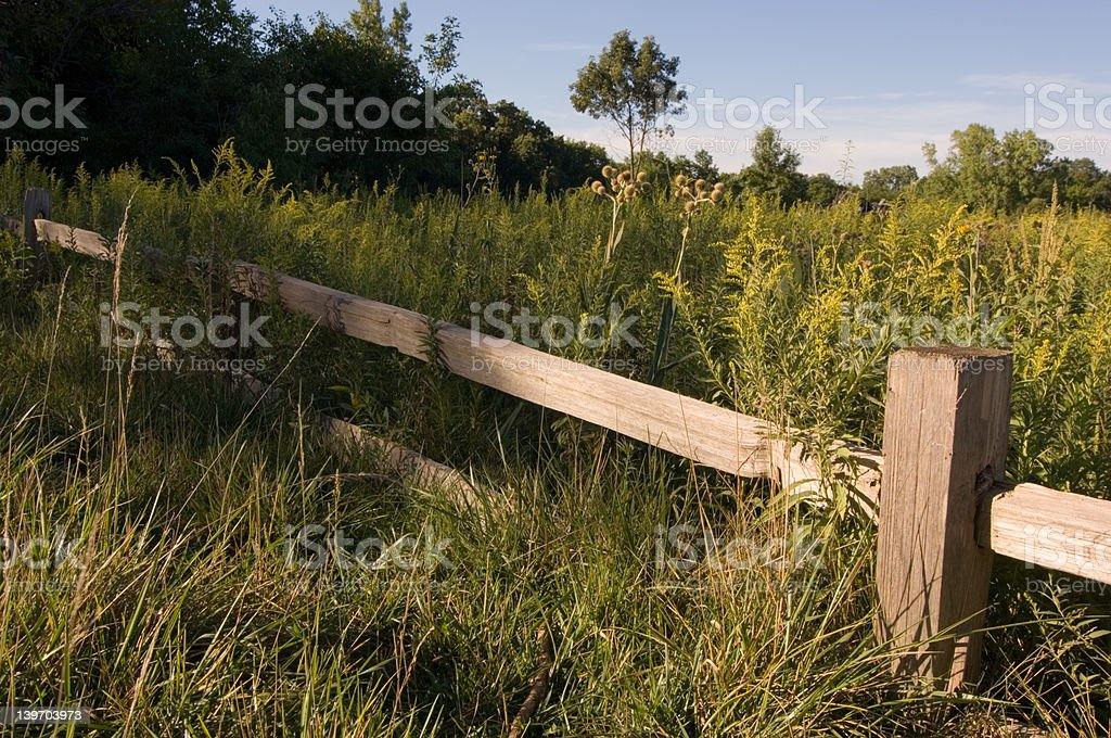 Meadow Fence royalty-free stock photo
