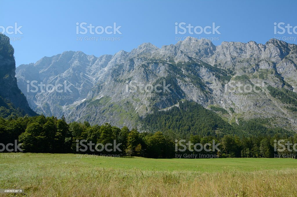 Meadow, forest and mountains. stock photo