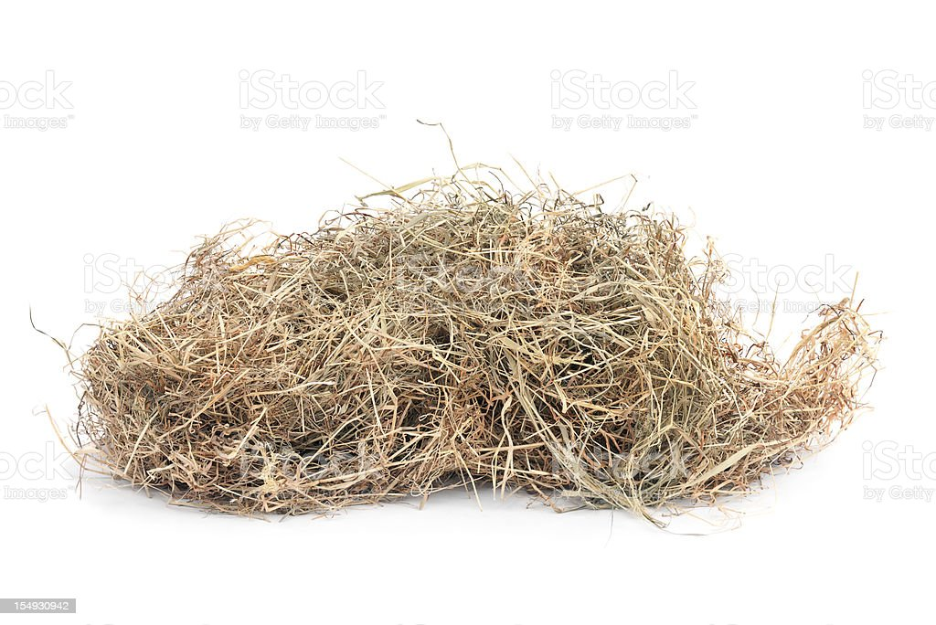 Meadow hay stock photo