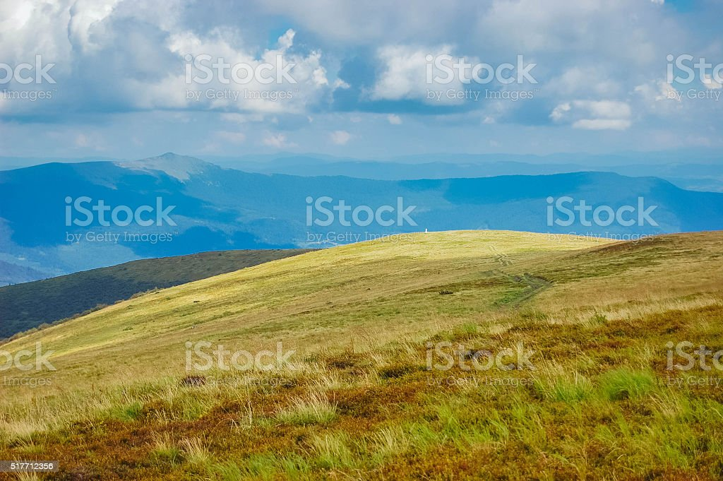 meadow in the mountains stock photo