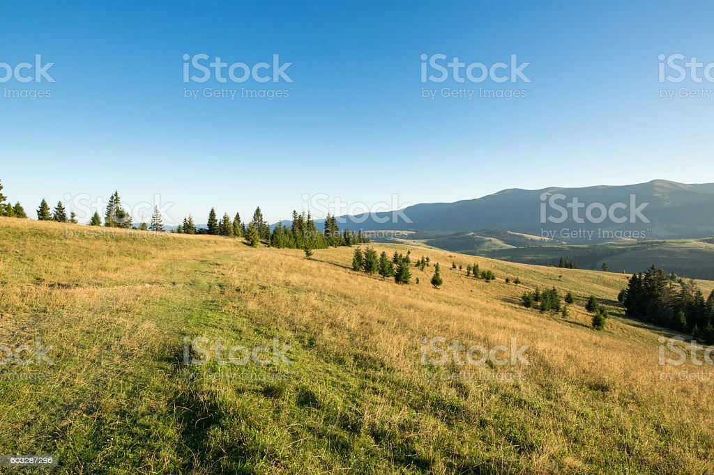 Meadow, mountain and blue sky stock photo