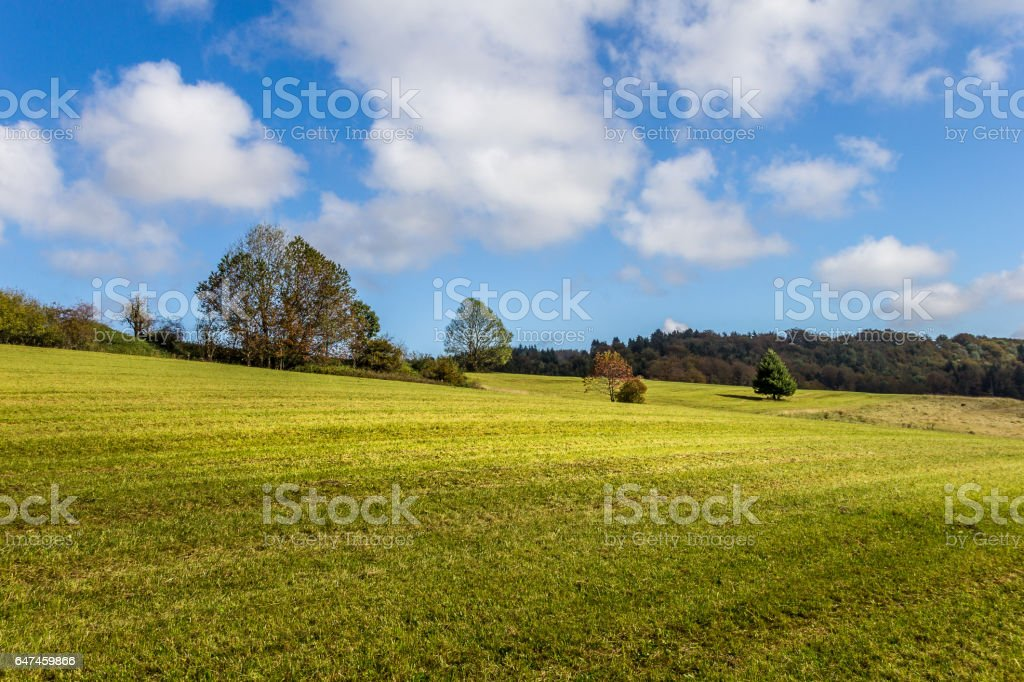 Meadow near Hausach in the black forest stock photo