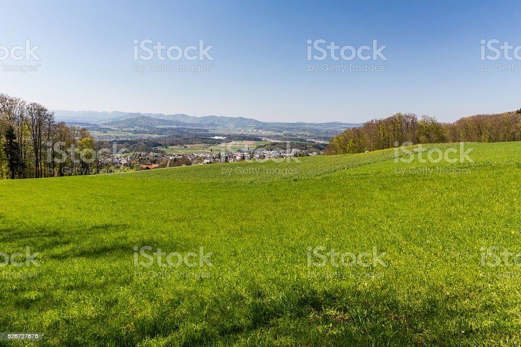 Meadow on a mountain near Zurich stock photo