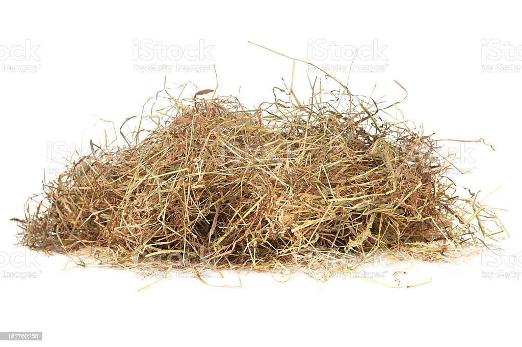Meadow hay stock photo