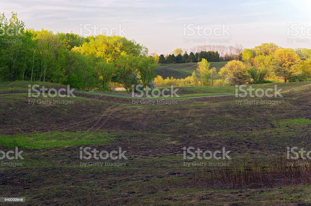 Meadow Trees and Trail of Battle Creek stock photo