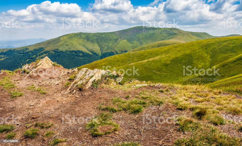 meadow with boulders in Carpathian mountains in summer stock photo