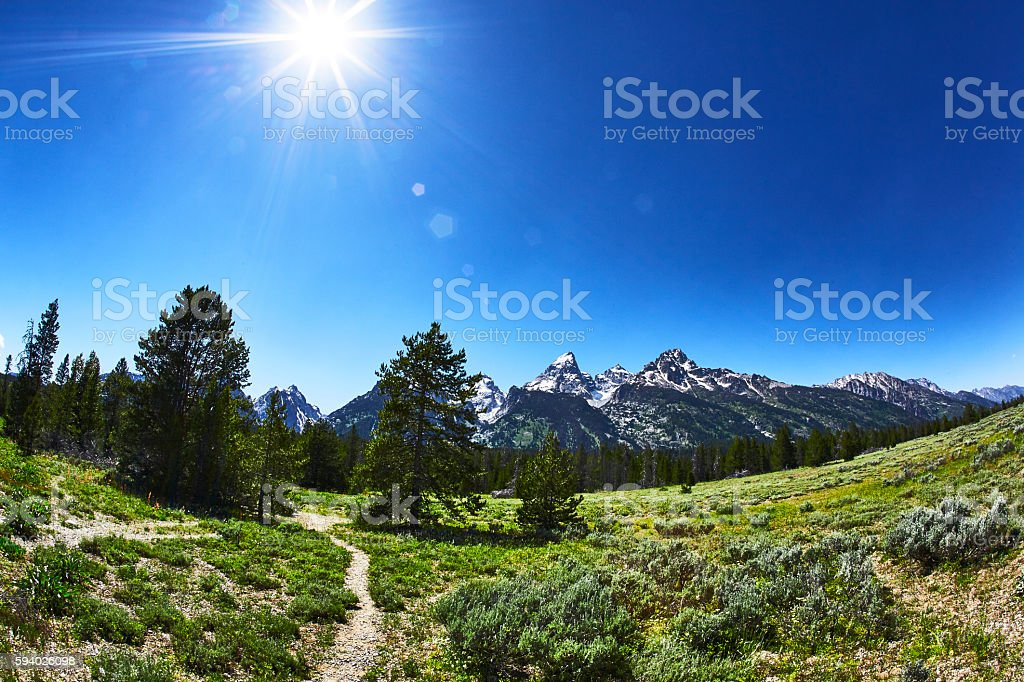 Meadow With Grand Tetons in Background, Grand Teton National Park, Wyoming stock photo