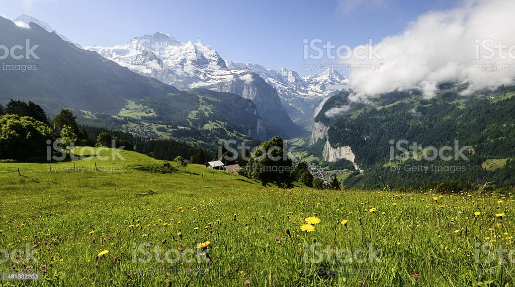 Meadow with snowcapped mountains in the background -XXXL stock photo