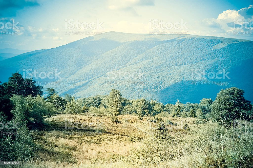 Meadow with trees and mountain stock photo