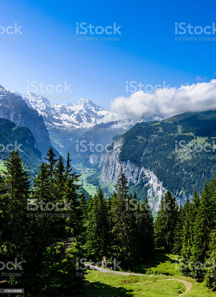 XXXL: Meadow with valley and snowcapped mountains in the background stock photo