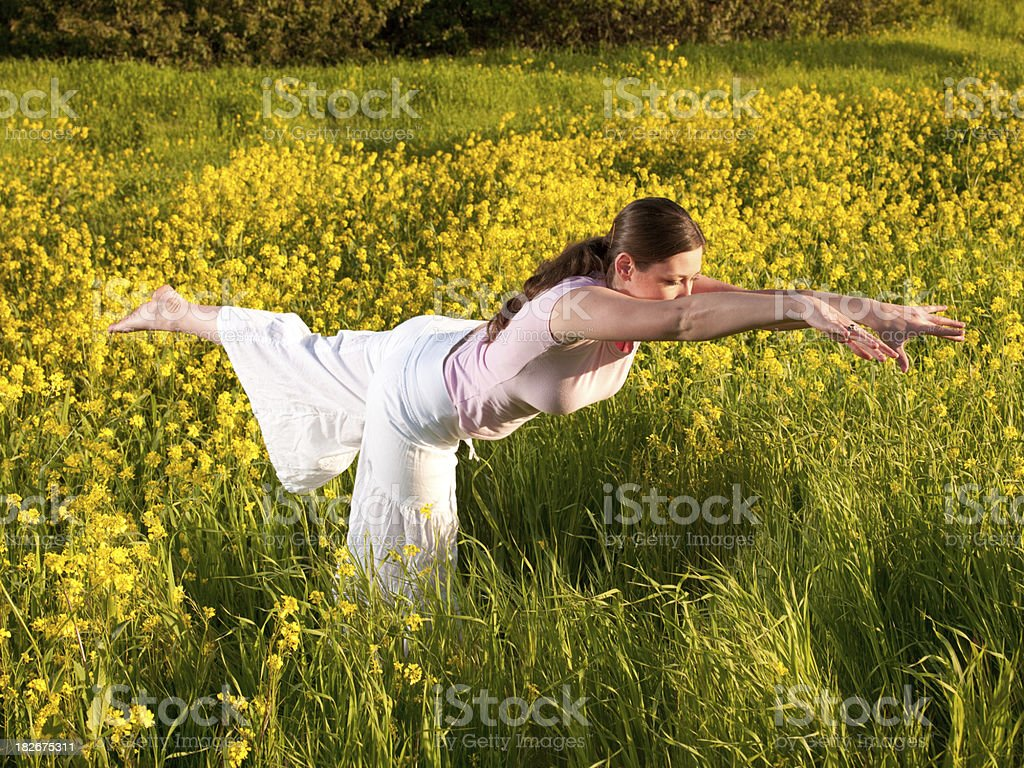 Meadow Yoga royalty-free stock photo
