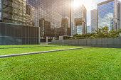 meadow,city skyline,Hong Kong,China