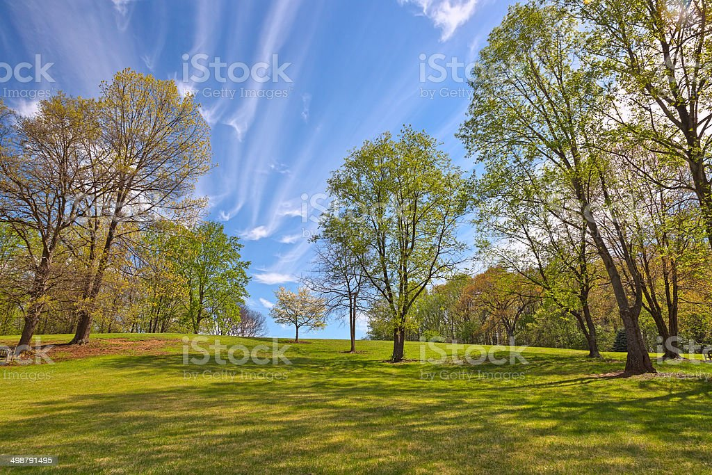 Meadowlark Gardens stock photo