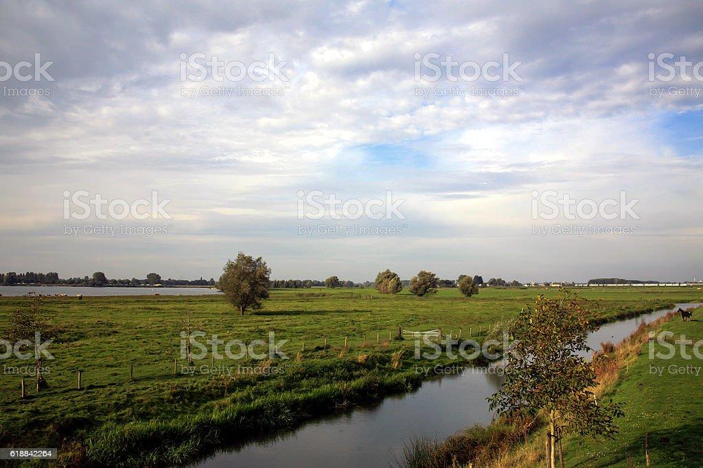 Meadows along Dutch river Meuse stock photo