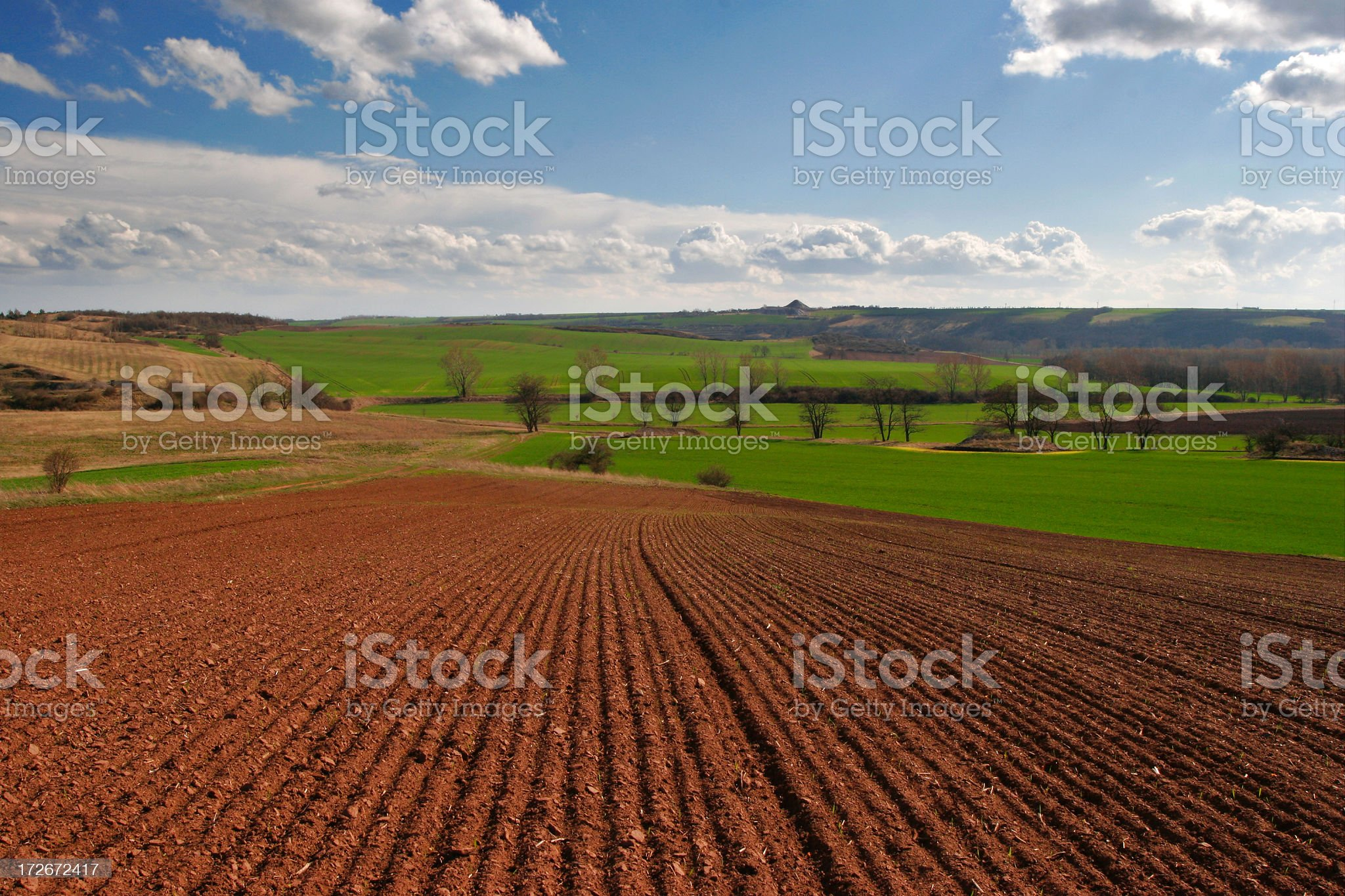 Meadows and Fields I royalty-free stock photo