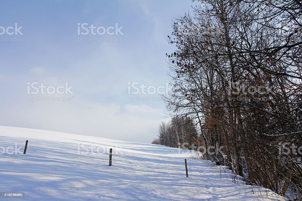 Meadows and fields in winter stock photo