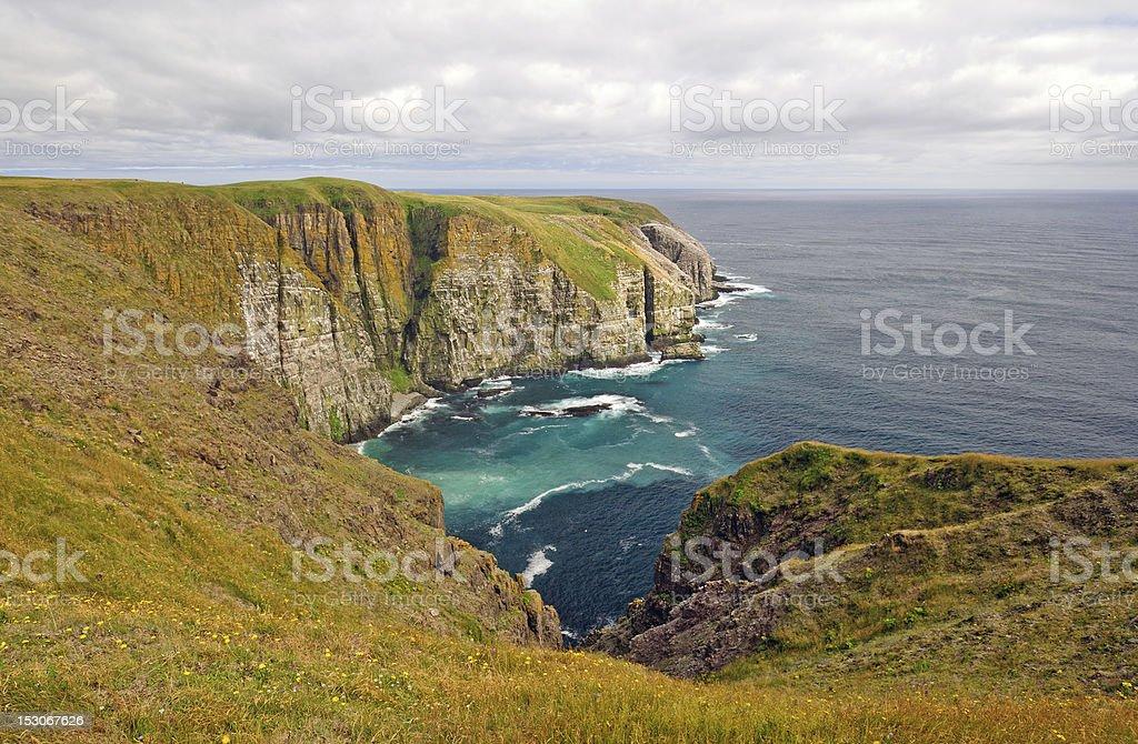 Meadows and Ocean Cliffs stock photo