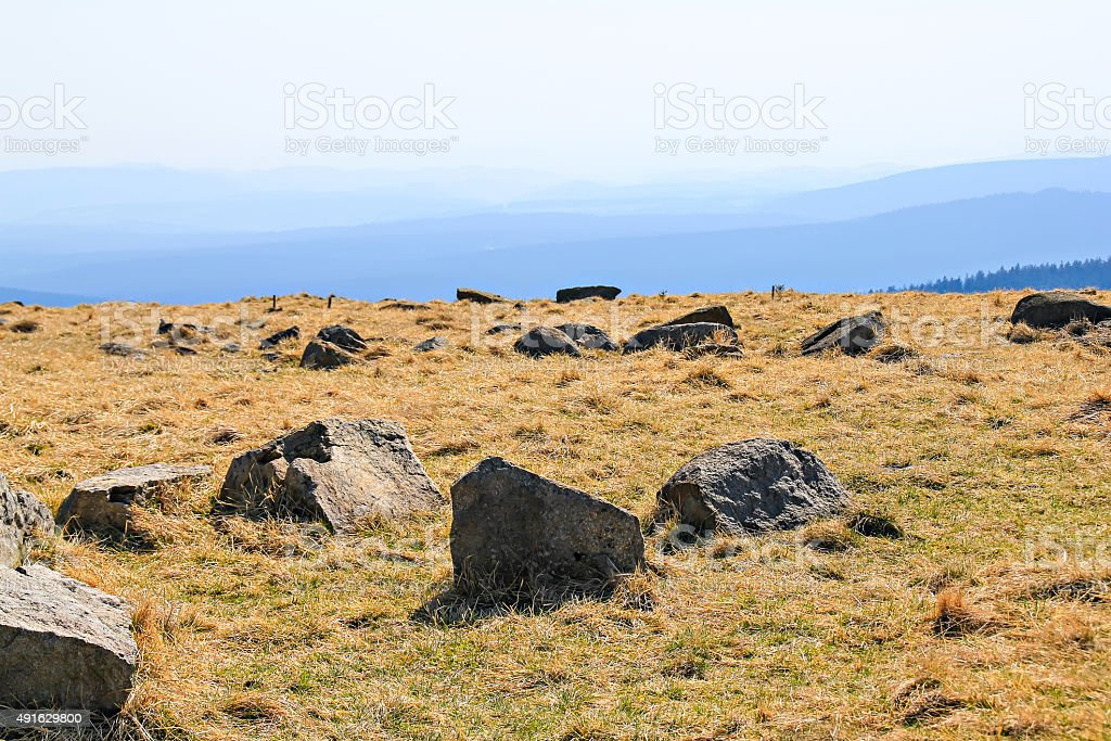 Meadows with stones on the Brocken stock photo