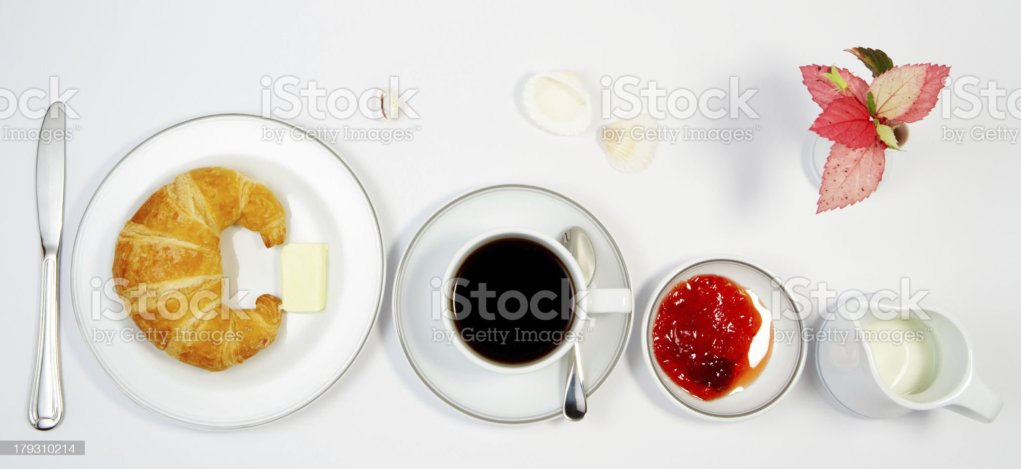 meal raw royalty-free stock photo
