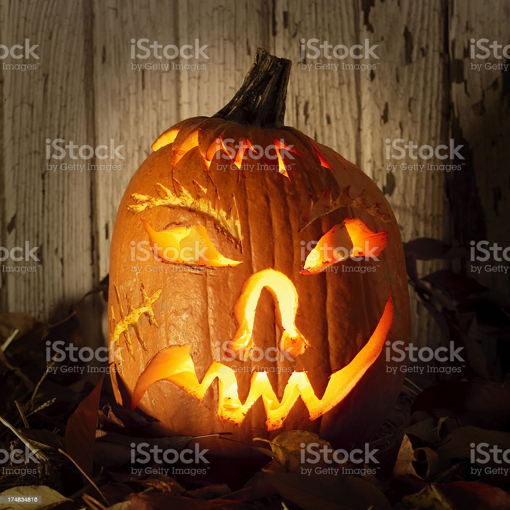 Mean Halloween pumpkin with leaves. royalty-free stock photo