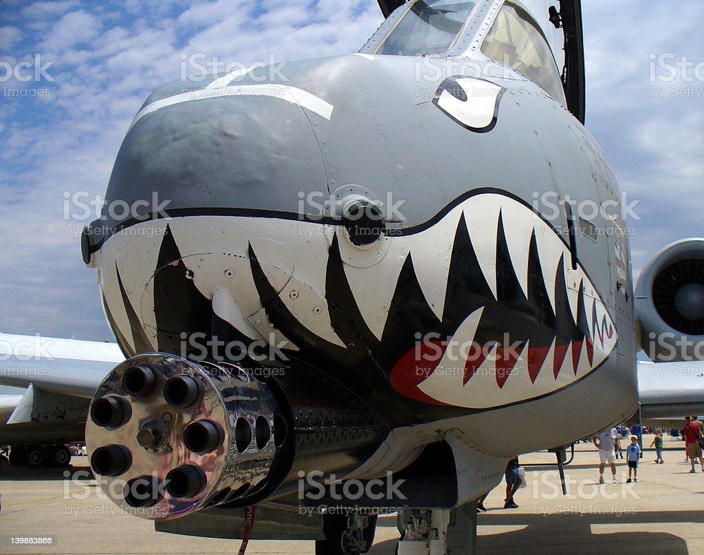 Mean Warthog stock photo