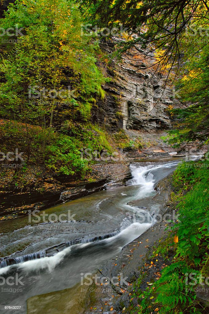 Meandering Creek royalty-free stock photo
