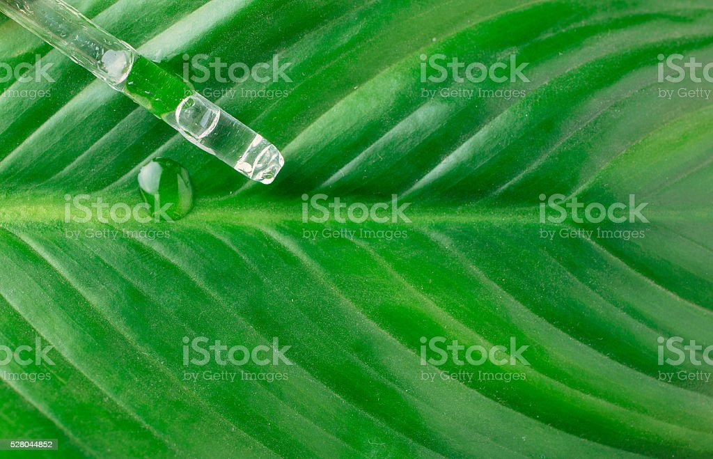 Means to combat plant pests stock photo