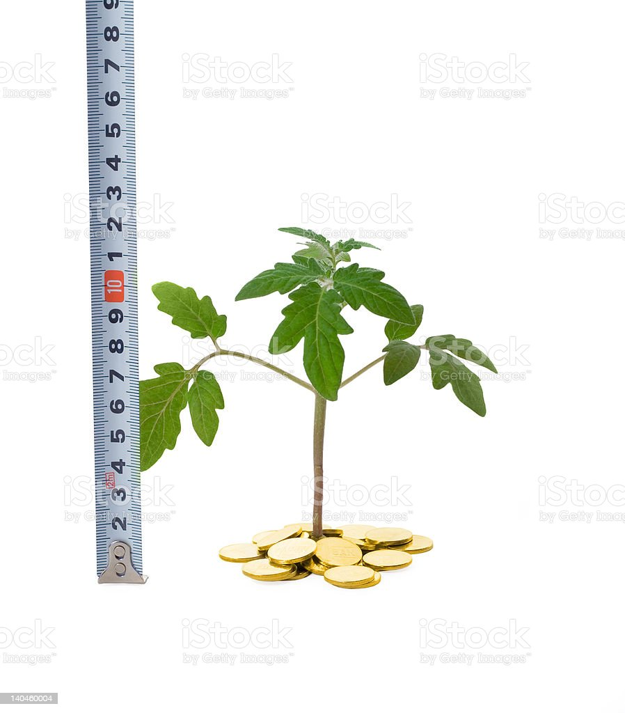 Measuring business growth royalty-free stock photo
