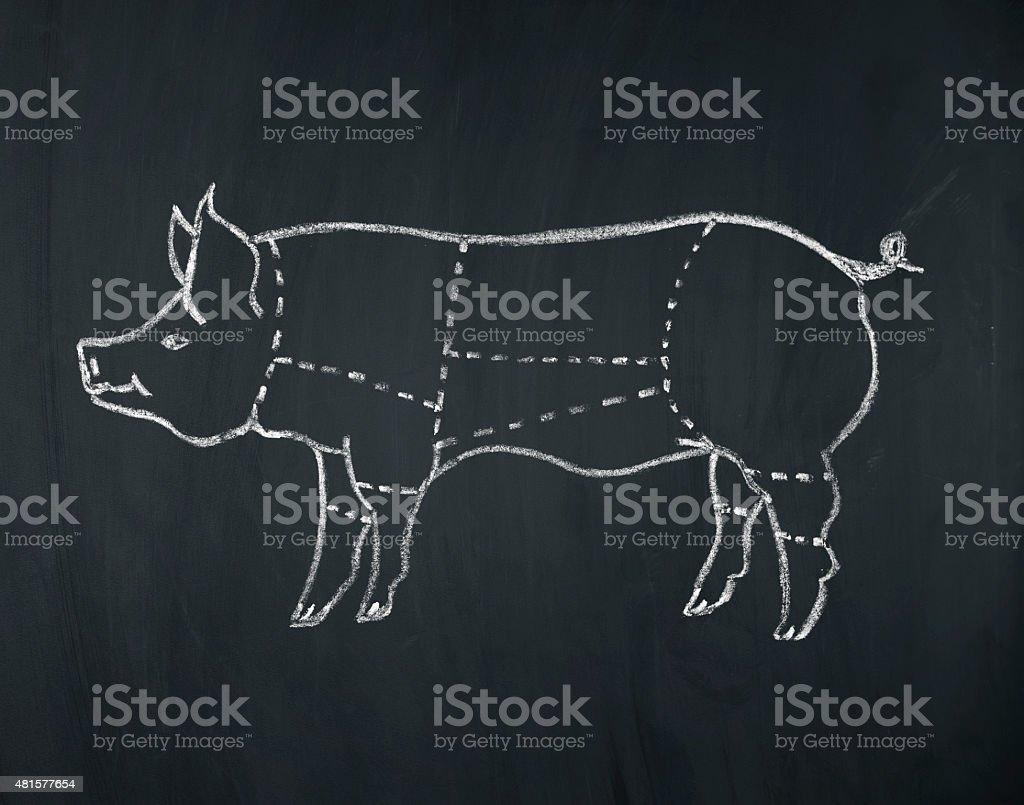 meat diagram of a pig vector art illustration