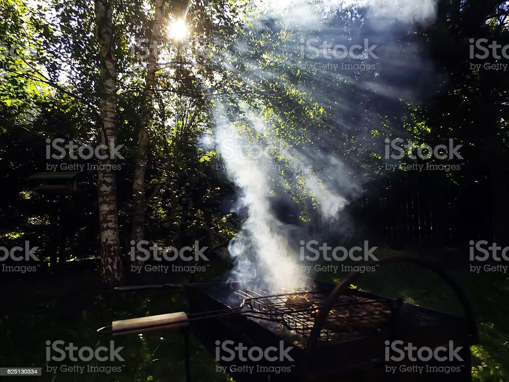 Meat is fried on charcoal grate in fores stock photo