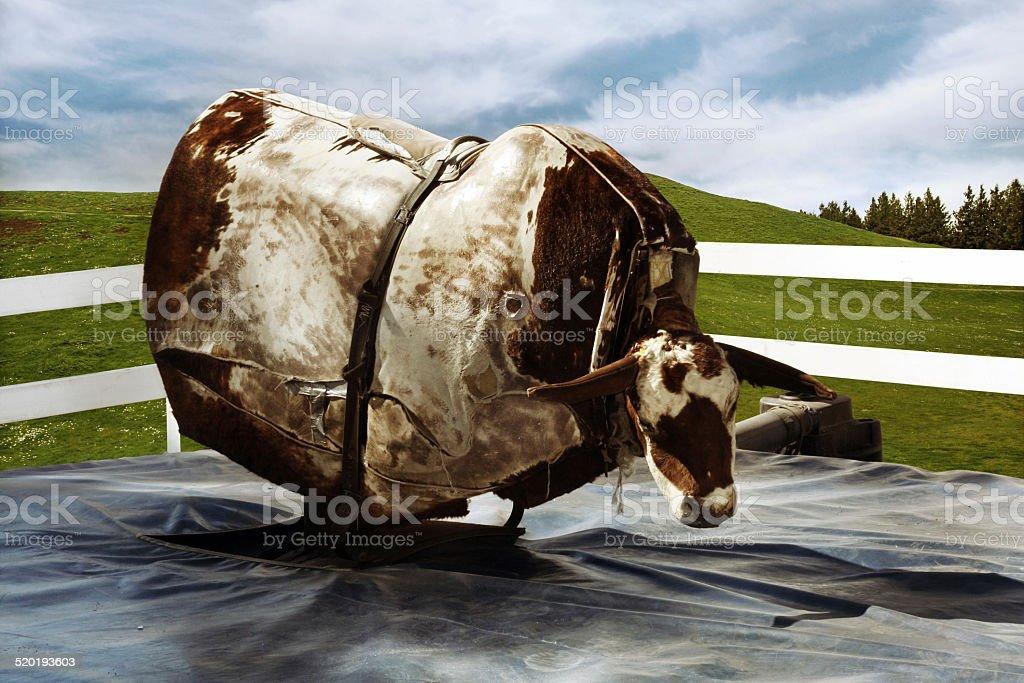 Mechanical Bull stock photo