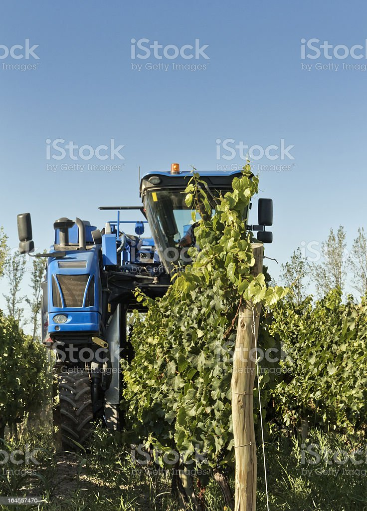 Mechanical harvester of grapes royalty-free stock photo
