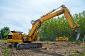 Mechanical Site Preparation for Forestry.
