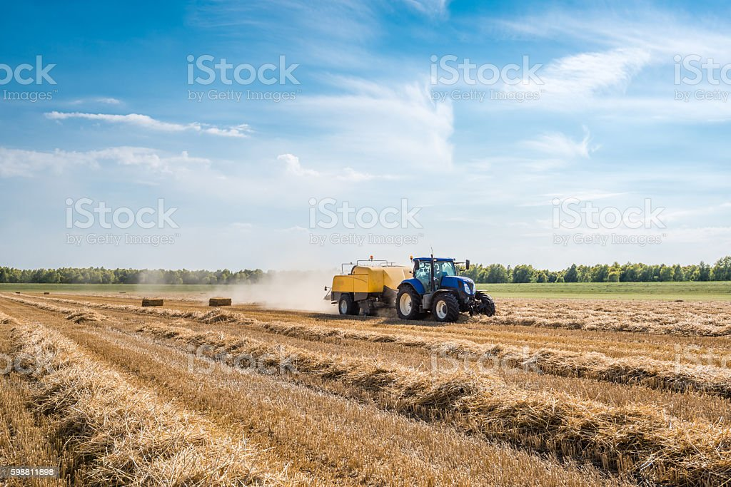 Mechanized picking straw and square baling stock photo