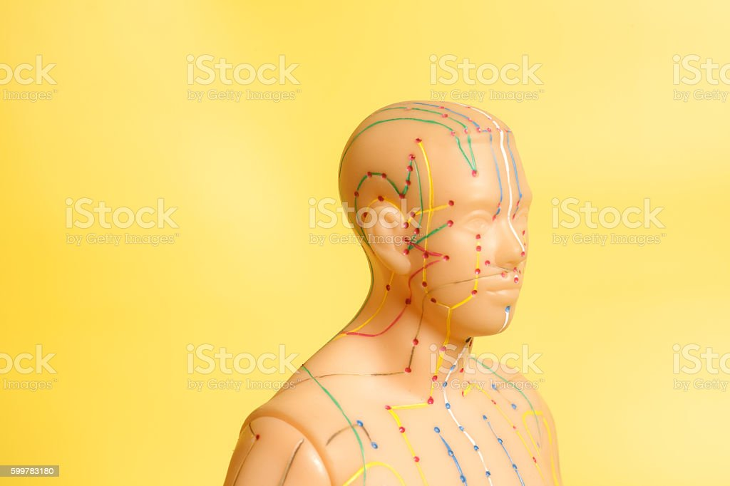 Medical acupuncture model of human head on yellow background stock photo