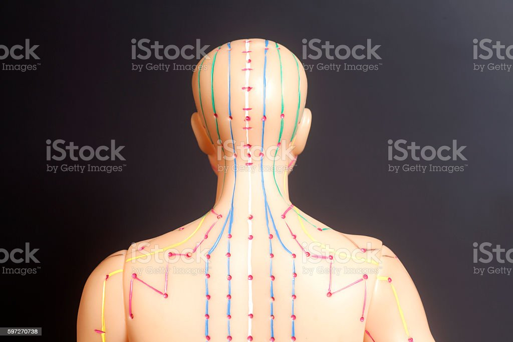 Medical acupuncture model of human on black background stock photo