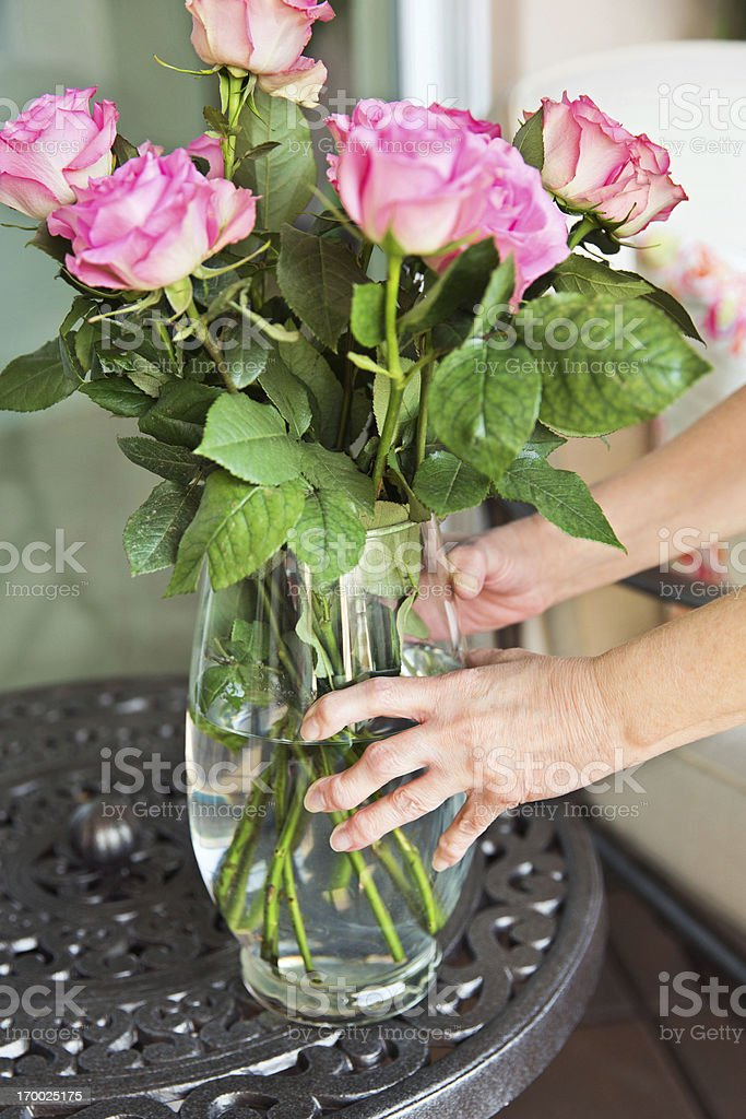 Medical: Arthritis:Arthritic Seniors hands holding a vase with roses stock photo