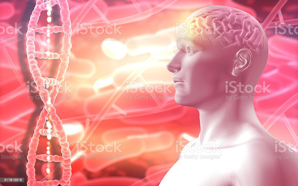 3D medical background with male figure with brain stock photo
