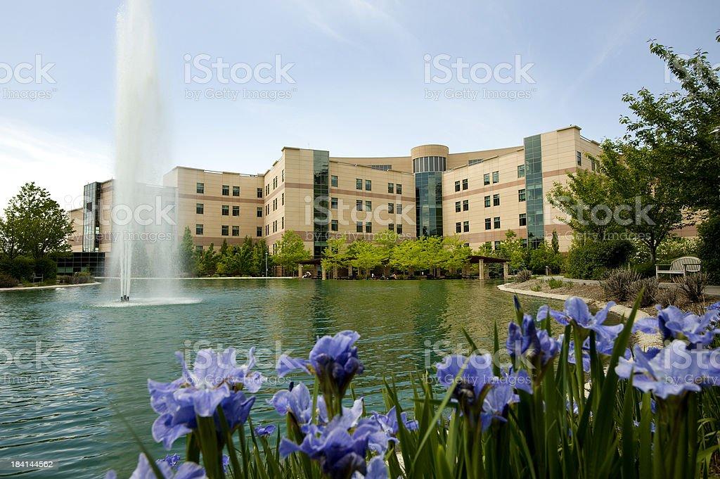 Medical Center royalty-free stock photo